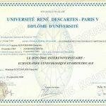 Γυναικολογικό και Μαιευτικό υπερηχογράφημα, Πανεπιστήμιο Paris 5
